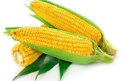 fresh-american-sweet-corn-500x500-1