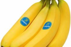 shop-online-from-ecuador-fruits-chiquita-banana-fresh-food-in-dubai-and-abu-dhabi-24624351502_grande